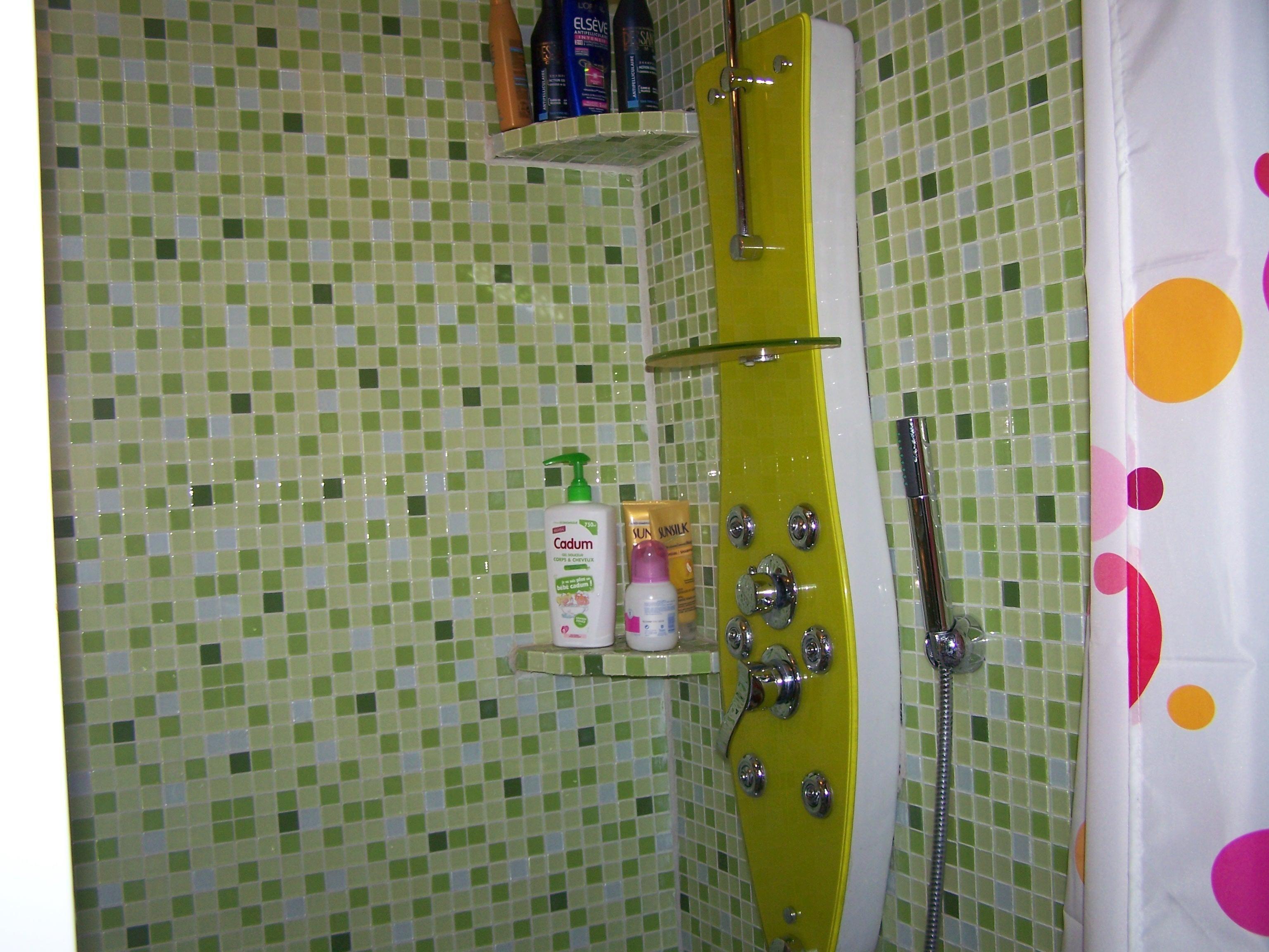 C 39 est fred qui refait sa salle de bain tout seul douche for Salle de bain douche italienne carreau de verre